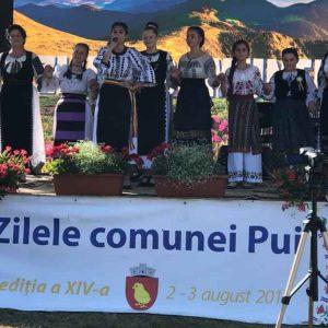 """""""Zilele comunei Pui"""". Văru Săndel, Tinu Vereșezan, dar și alți artiști îndrăgiți au încântat publicul spectator"""