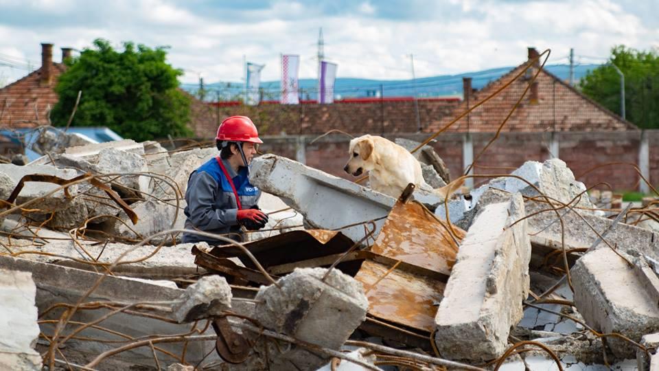 Echipaj canin hunedoarean atestat la nivel internațional pentru operațiunile de căutare – salvare în dărâmături