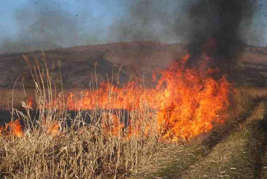 Hunedorenii care incendiază terenurile pot rămâne fără subvenția de la APIA