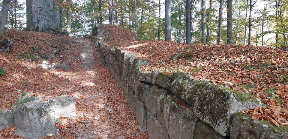 Sarmizegetusa Regia ar urma să fie restaurată și revitalizată cu fonduri norvegiene
