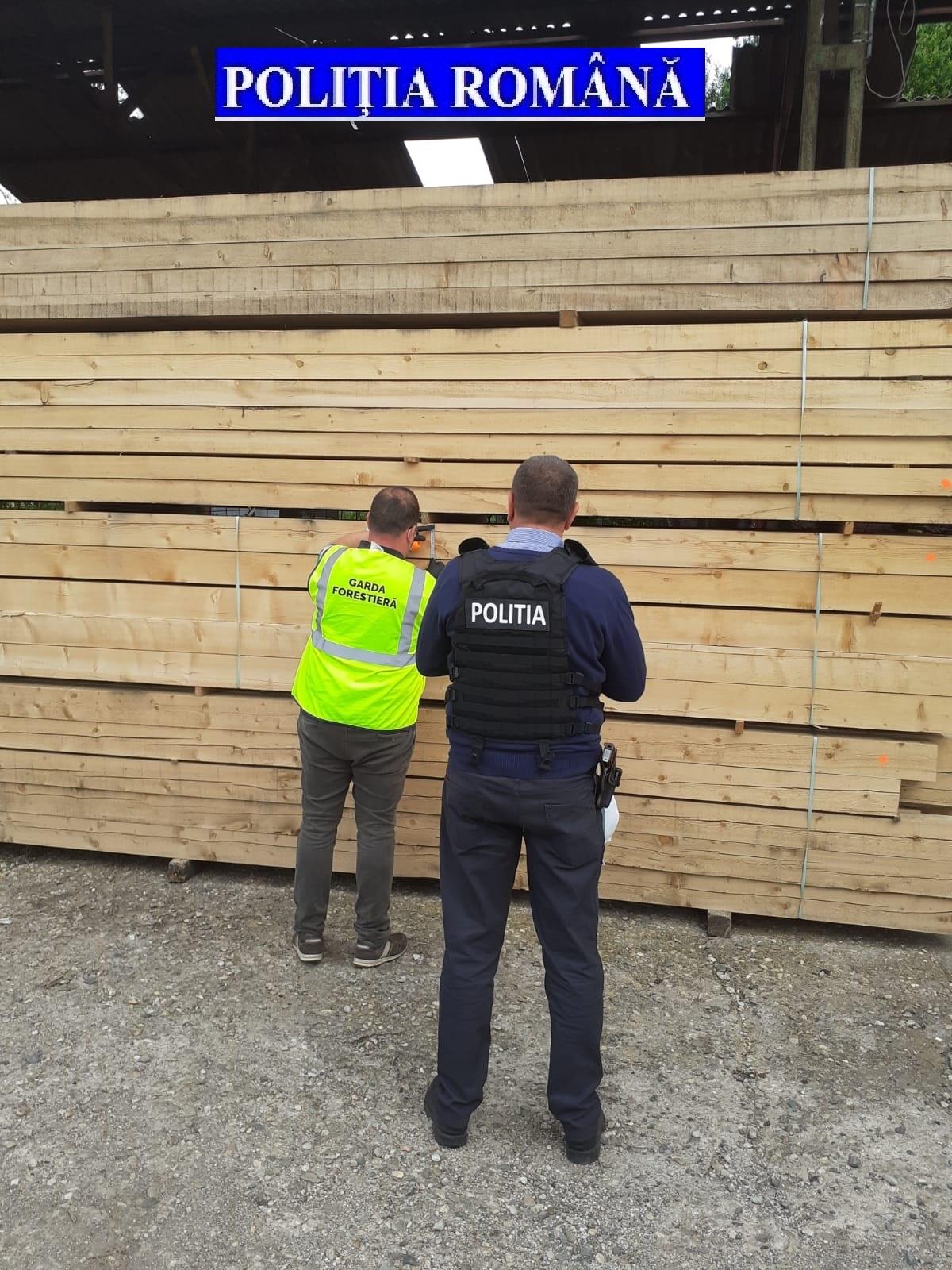 Amenzi de zeci de mii de lei și dosare penale pentru nereguli în exploatarea lemnului