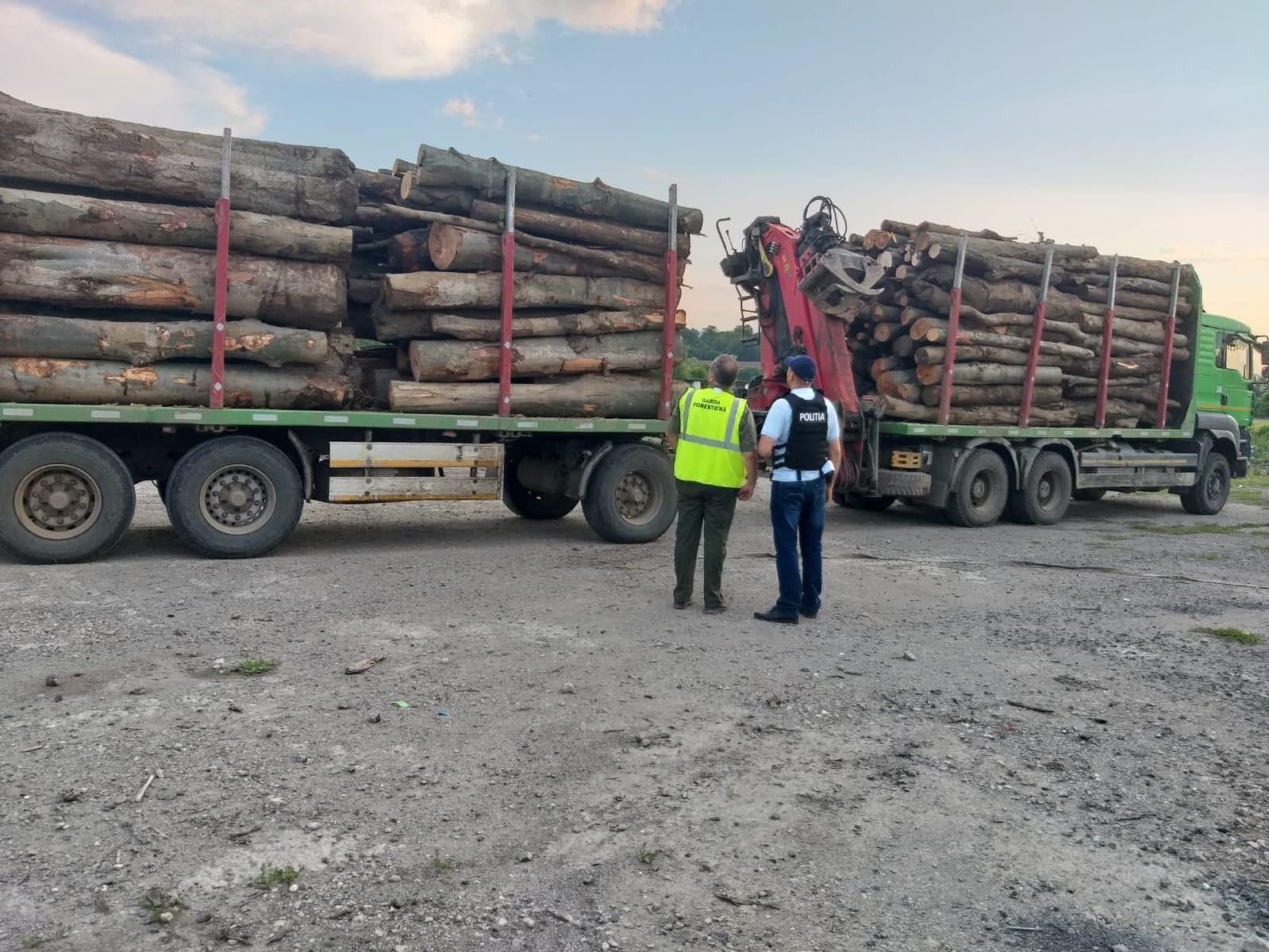 Amenzi de peste 10.000 de lei pentru transport ilegal de lemne