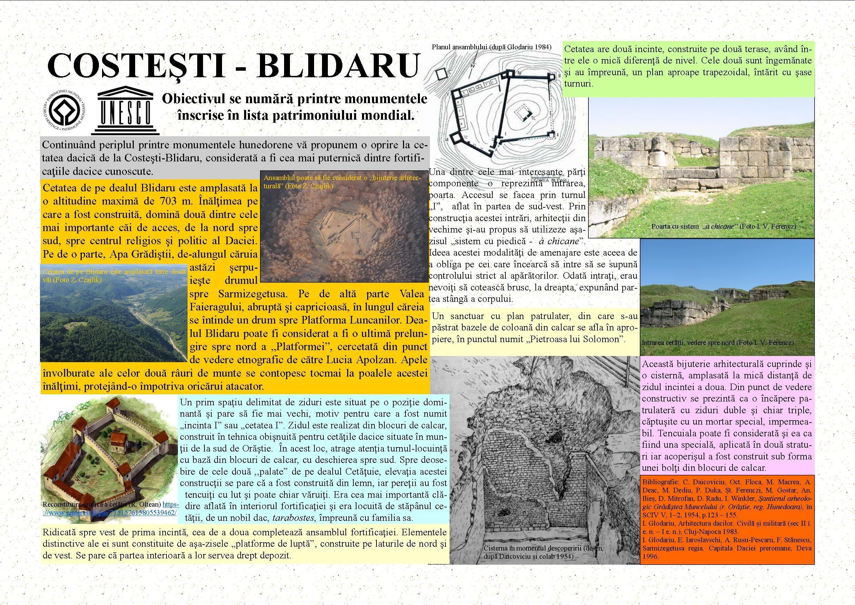 Un monument pe săptămână – Cetatea dacică de la Costeşti-Blidaru