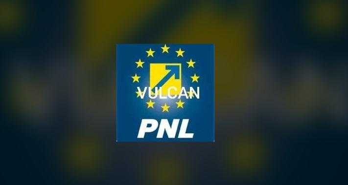 """Consilierii locali liberali de la Vulcan, care au anunţat crearea unei """"echipe"""" de lucru cu PSD şi Pro România, propuşi pentru excludere din partid"""
