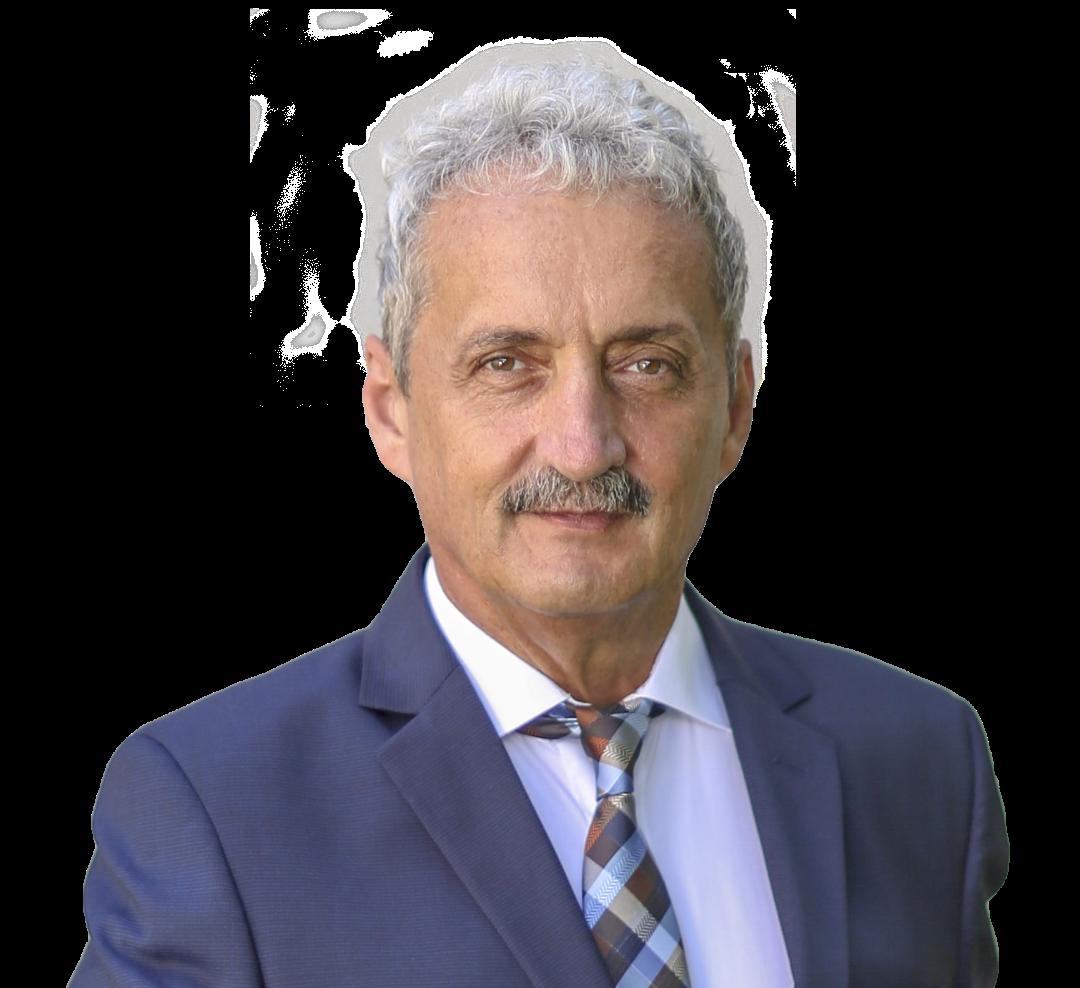 Viorel Arion și Robert Muzsic deschid listele pentru Camera Deputaților și Senat, din partea PMP Hunedoara