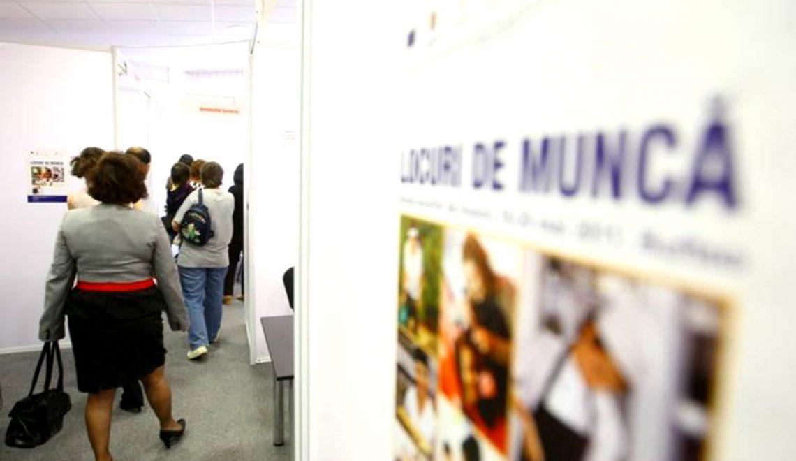 Aproape 5.000 de persoane şi-au găsit un loc de muncă cu sprijinul AJOFM Hunedoara