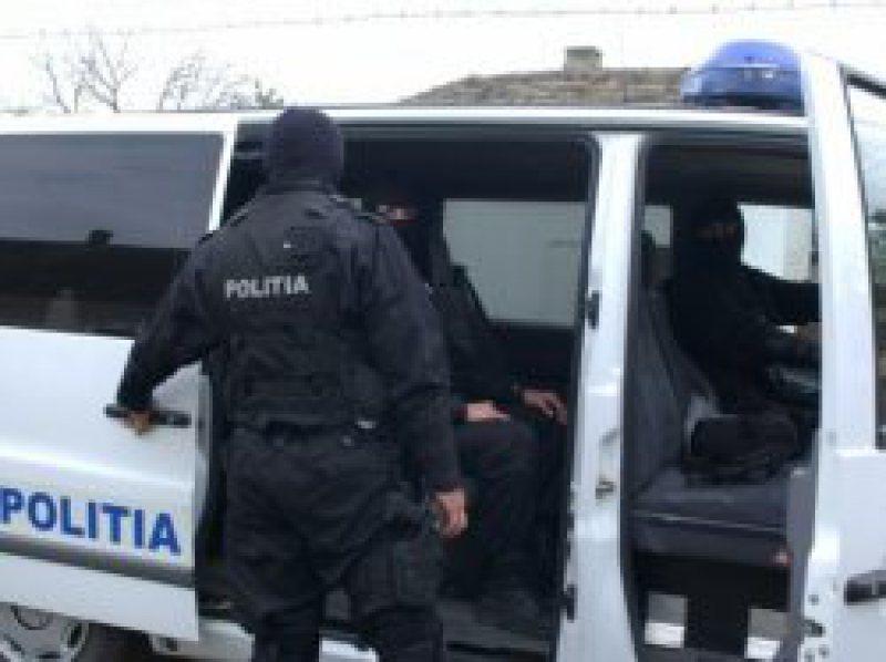 Percheziţii în judeţele Gorj şi Hunedoara, într-un dosar de evaziune fiscală cu cherestea. Prejudiciu –  peste 300.000 de lei
