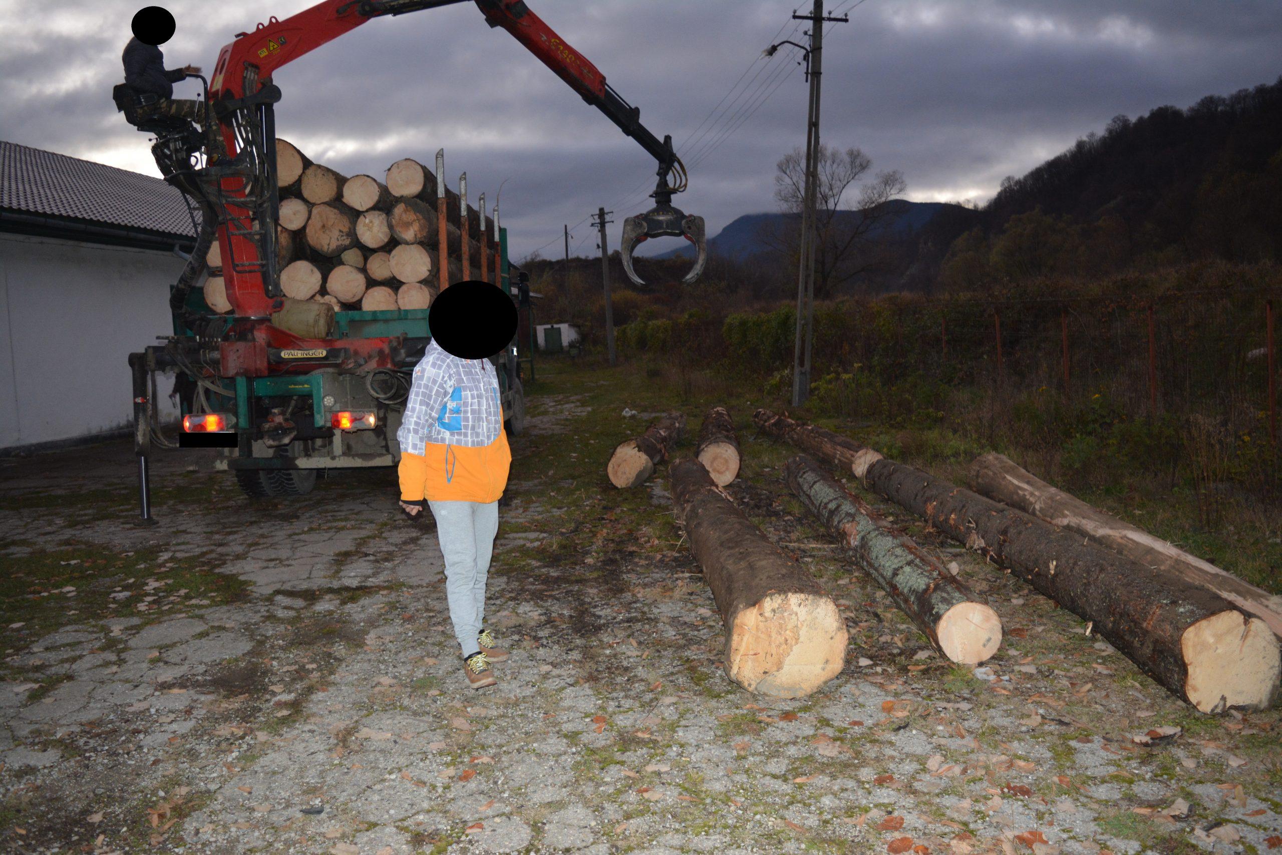 Jandarmii au amendat un transportator de lemne cu 3.000 de lei. Bărbatul avea mai multă marfă față de ce era scris în acte