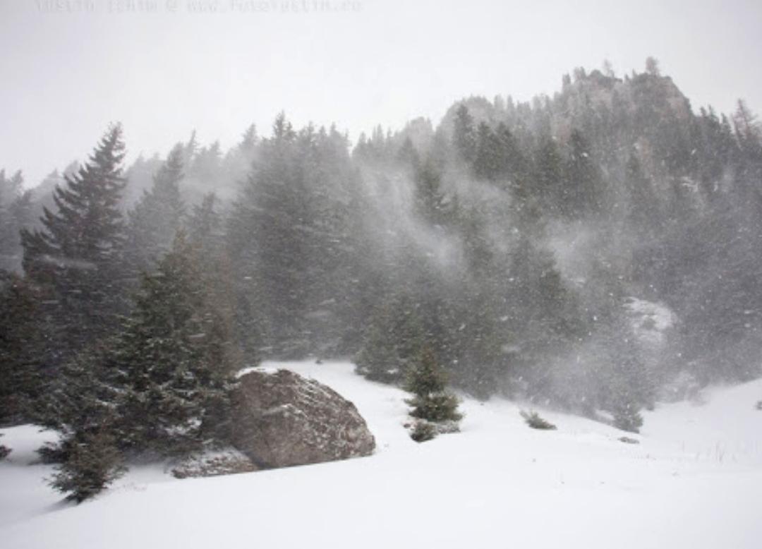 Cod galben de vânt în zona de munte a județului, la peste 1800 de metri