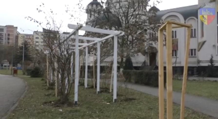 Noi pergole pentru trandafiri, în Parcul Tineretului din Hunedoara