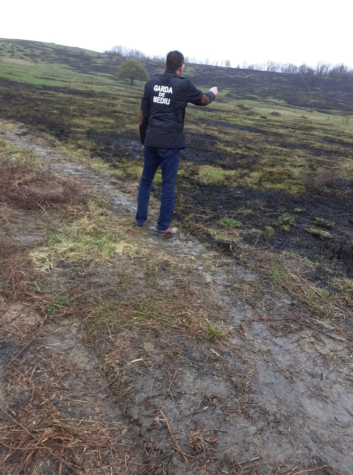 Proprietarii unor terenuri din Boz, ar putea să piardă subvențiile de la APIA din cauza incendiilor de vegetație uscată
