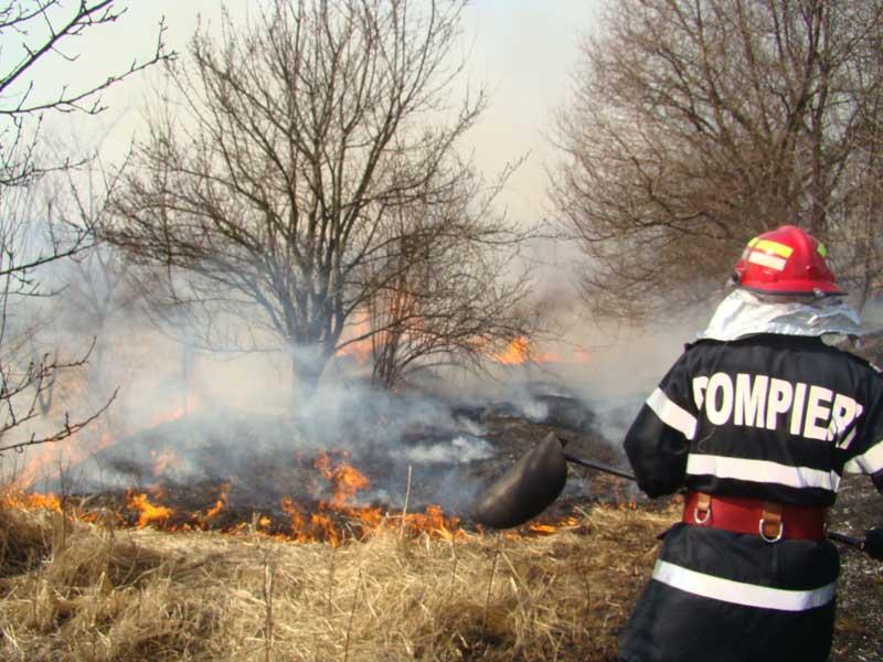 Comisarii Gărzii de Mediu atrag atenția asupra numărului tot mai mare de arderi de resturi vegetale