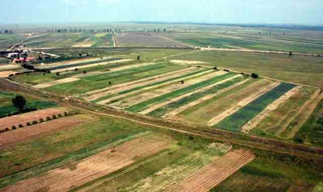 În 10 mai, începe Recensământul General Agricol. În judeţul Hunedoara vor fi recenzate aproximativ 58.600 de exploataţii agricole