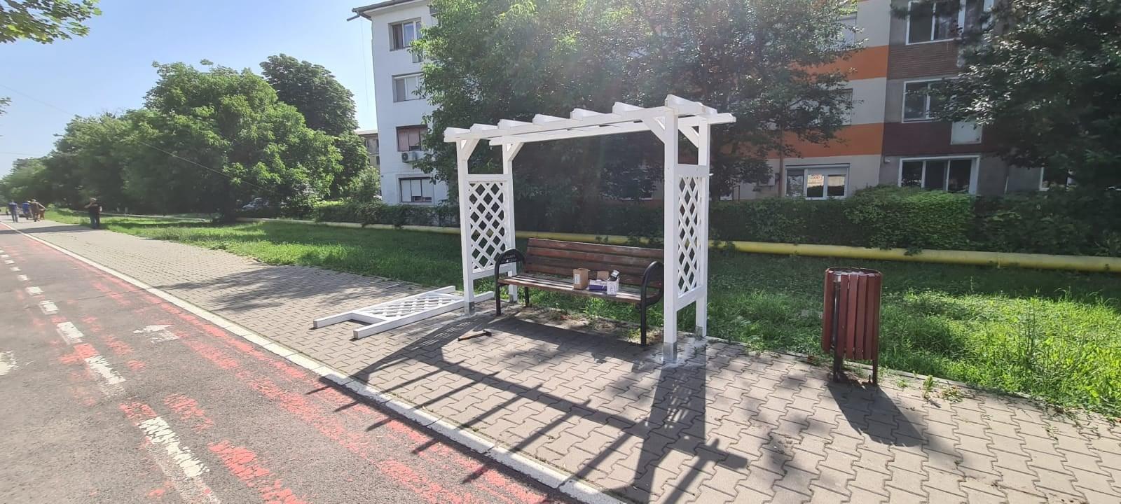"""Bănci cu """"perdele"""" de trandafiri la Hunedoara: prima etapă – pergolele de suport"""