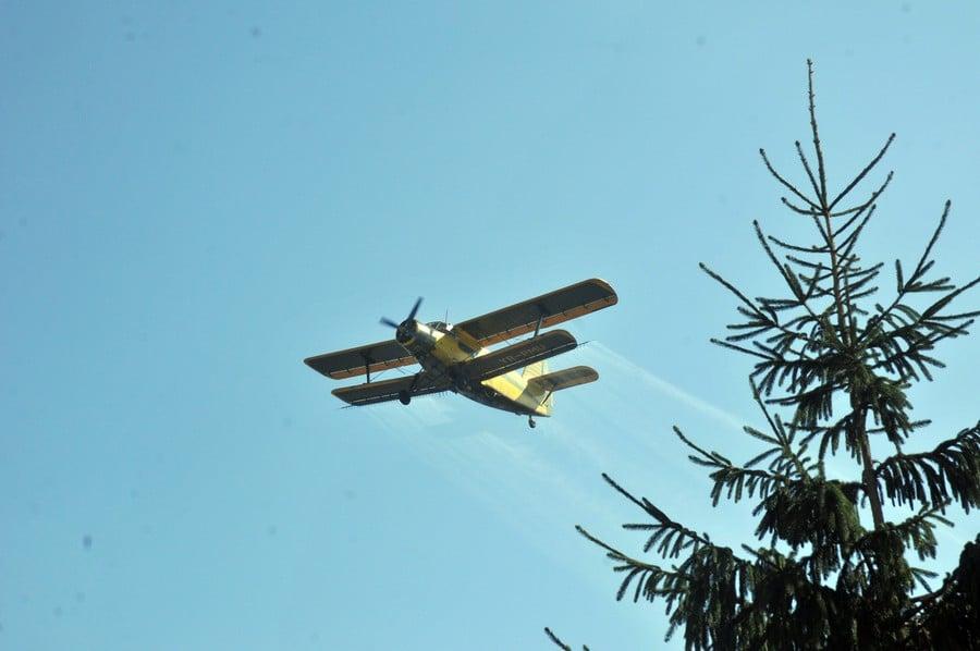 O nouă acțiune de dezinsecție avio la Deva