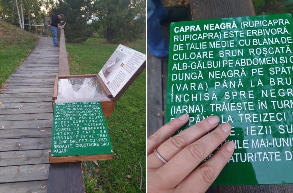 Traseu accesibil persoanelor cu dizabilități în Parcul Național Retezat. Tăblițe cu descrierea unor specii de animale, în scriere Braille